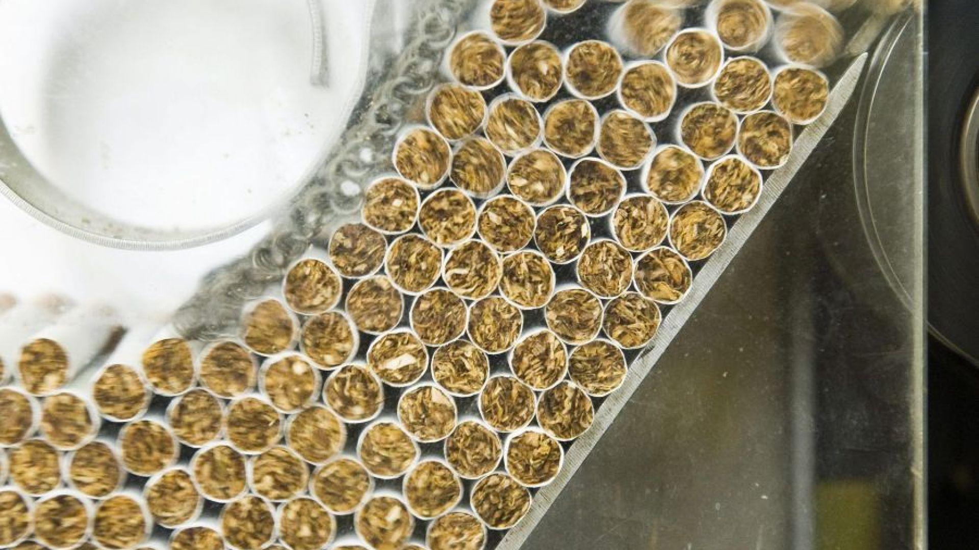 България на 6-та позиция в ЕС по производство на цигари