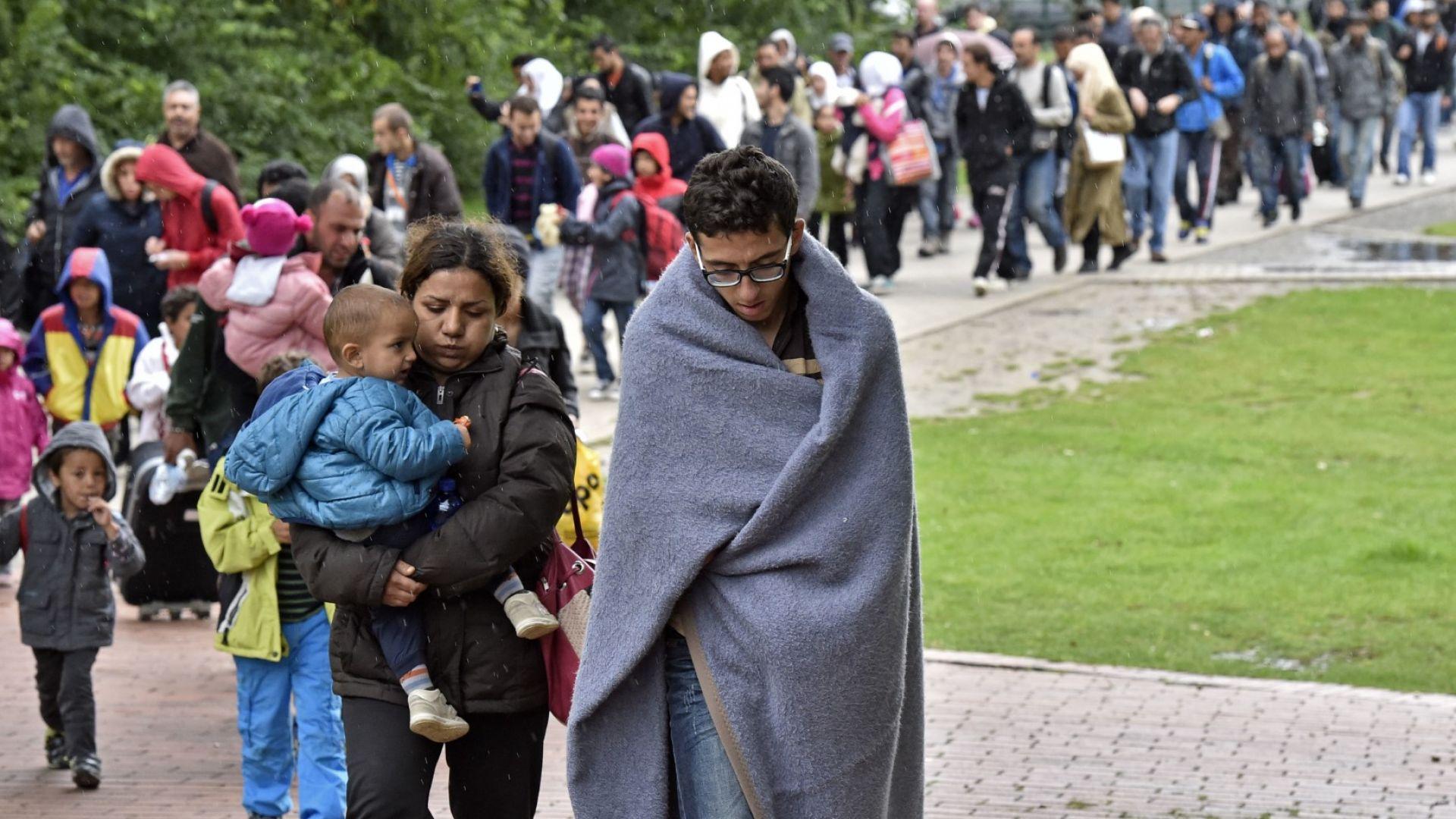 """Австрия предупреждава за нов мигрантски """"маршрут на джамиите"""""""