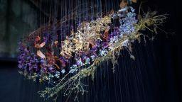 Магическите инсталации на Лола Гуерера