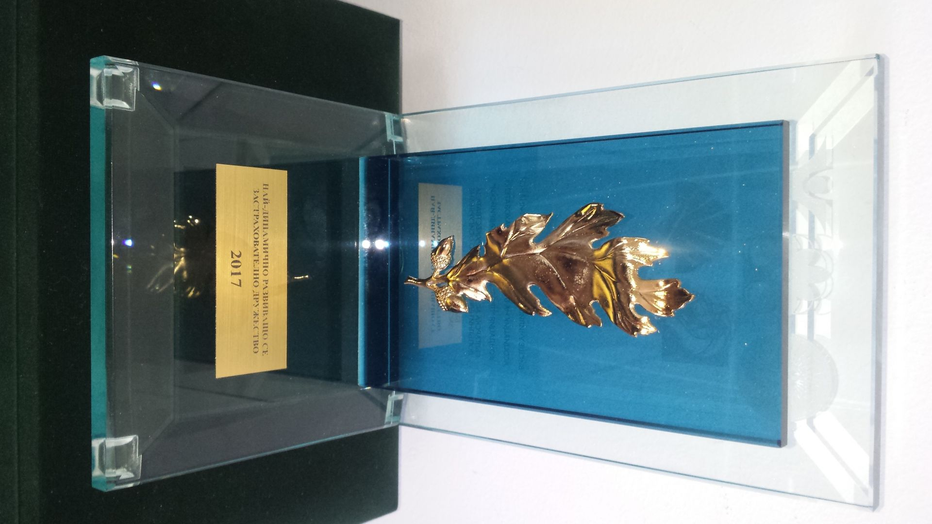 """ЗД """"Евроинс"""" спечели приз за """"Най--динамично развиващо се застрахователно дружество"""""""