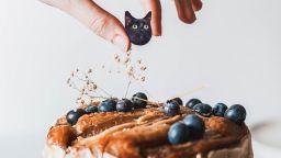 Котки - толкова сладки, че ти идва да ги изядеш