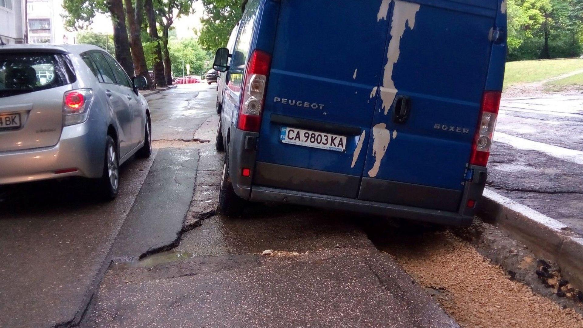 """""""Воля"""": След потопа във Варна оцеляха само дупките, запълнени от Марешки"""