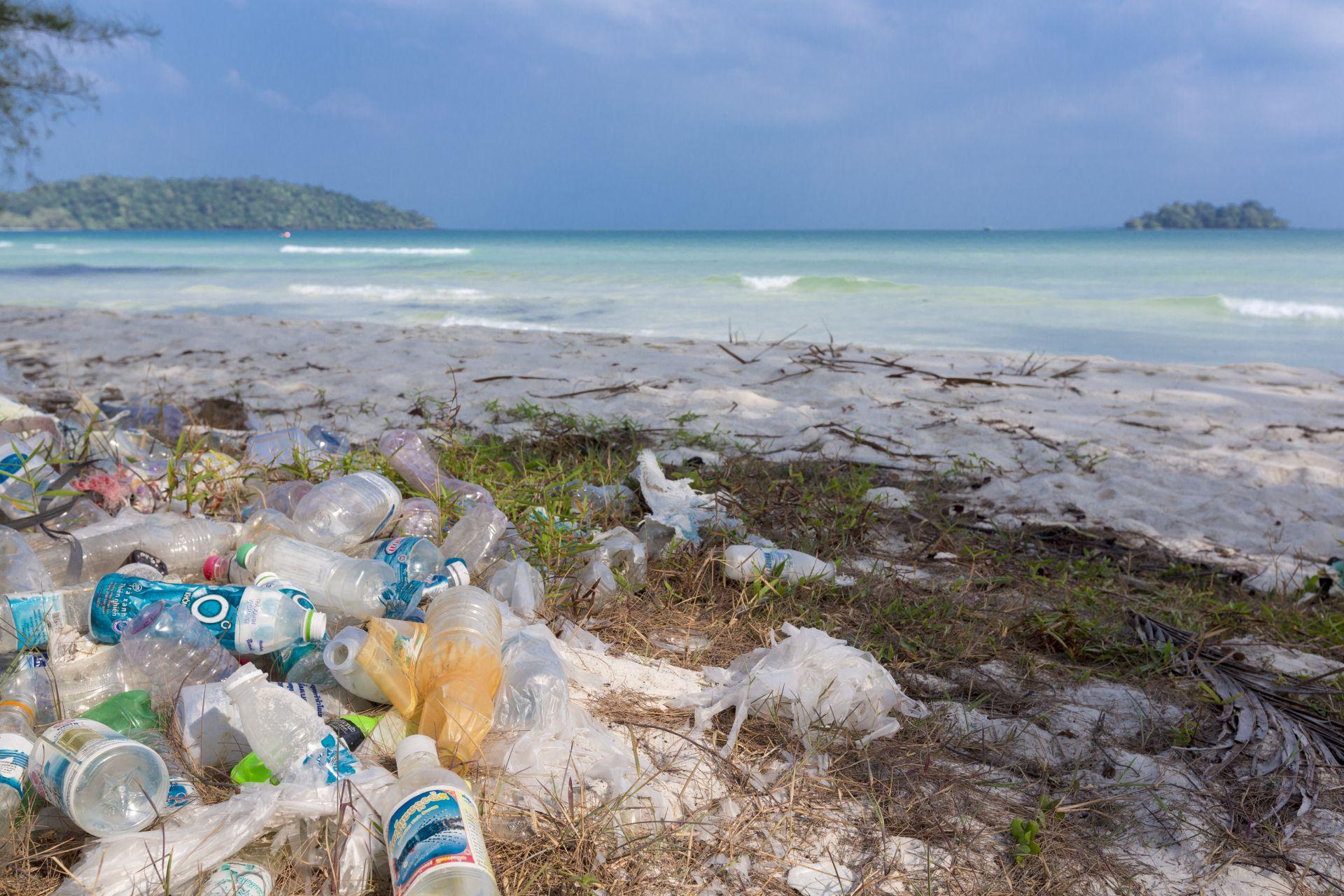 Плоблемът с пластмасовото замърсяване