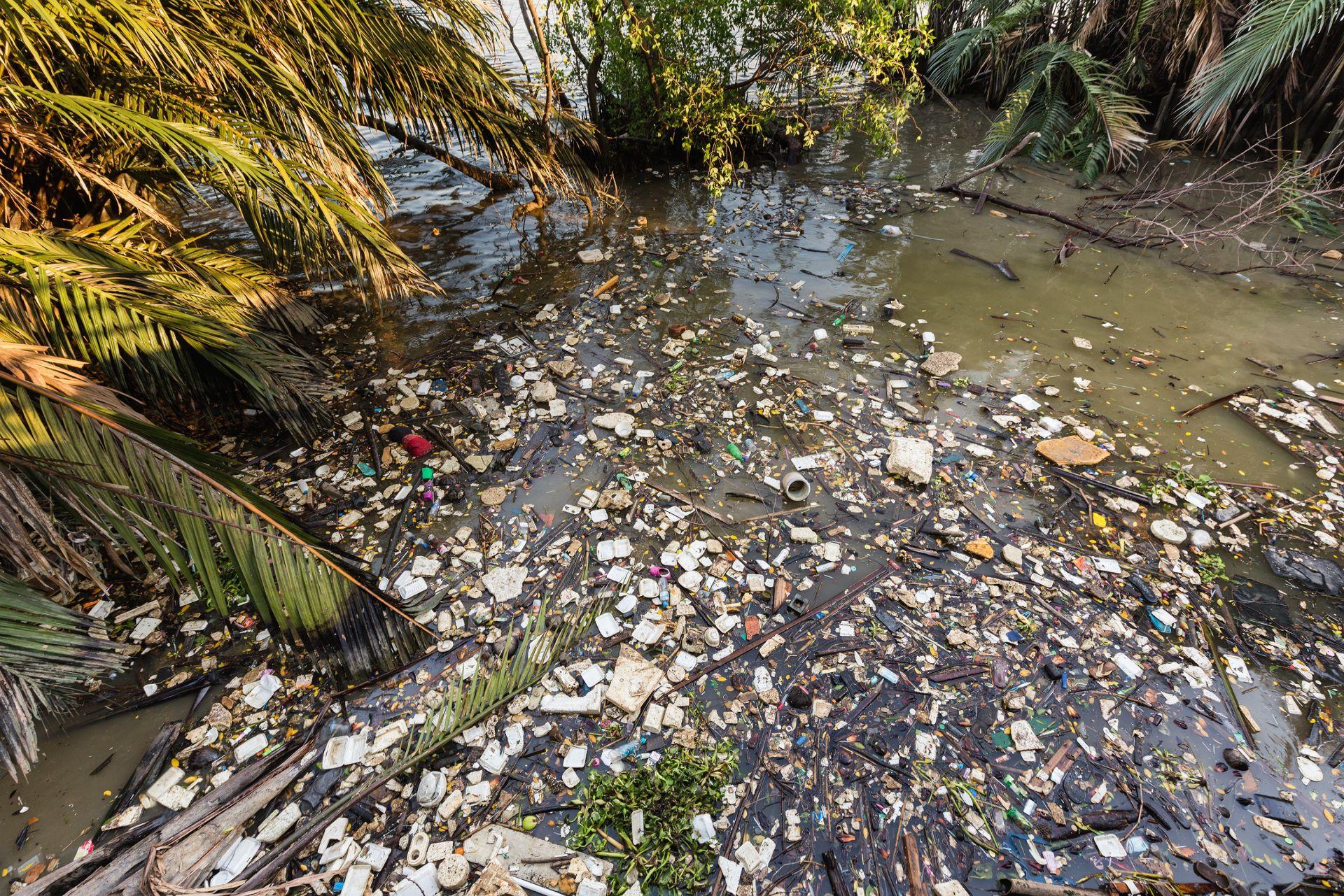 Да спрем пластмасовото замърсяване!