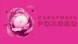 """Танцовият спектакъл """"Съвършено розово"""" - с премиера в НДК"""