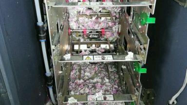 Плъхове накъсаха банкноти за 17 000 долара в банкомат в Индия