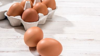Спешно изтеглиха над милион български яйца от пазара заради птичи грип