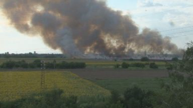 Голям пожар в покрайнините на Пловдив (видео)
