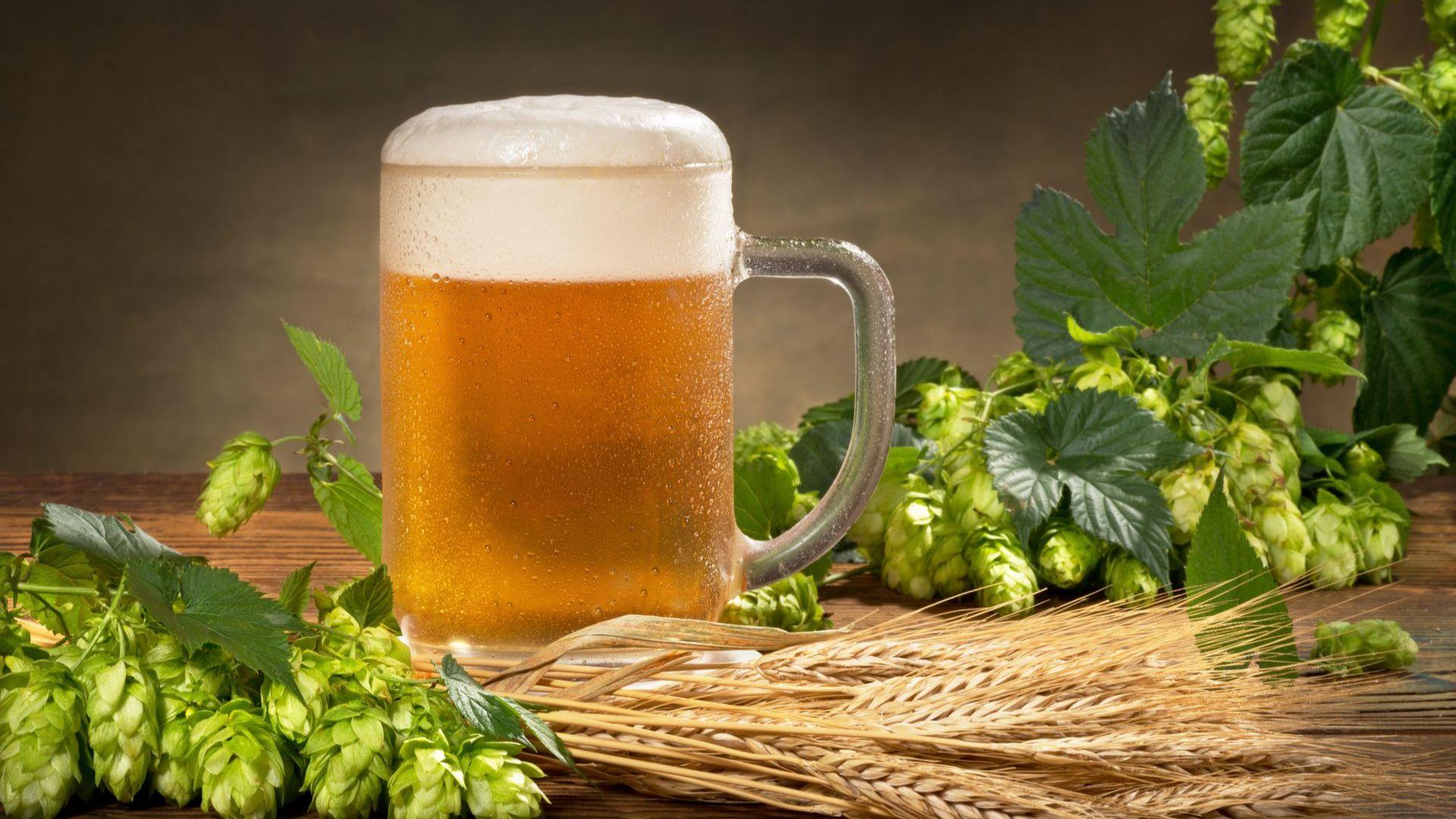 Днес отбелязваме Международния ден на бирата