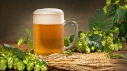 Шведите варят бира още от желязната епоха