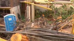 70-годишно дърво падна, стотици семейства останаха без ток и вода