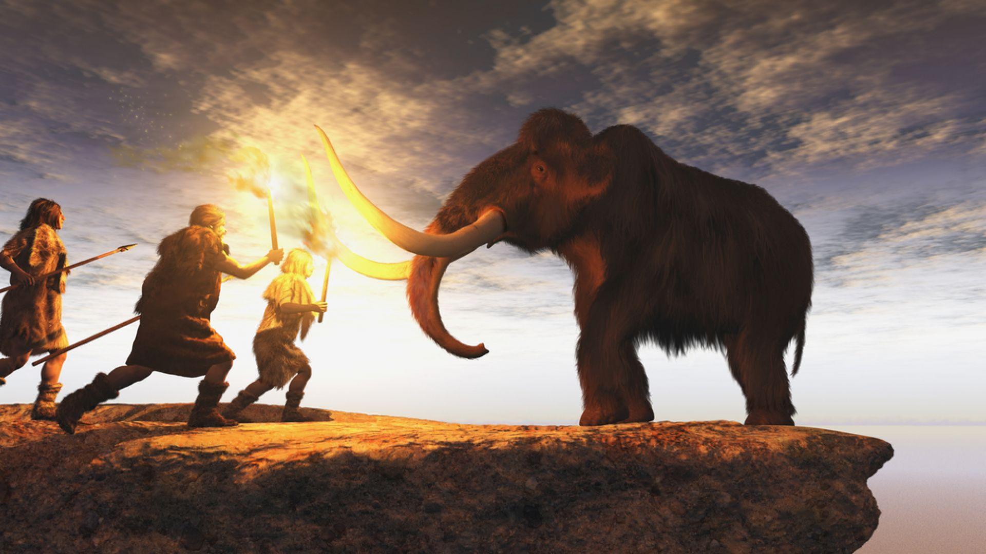 Хората - виновни за измирането на едрите бозайници