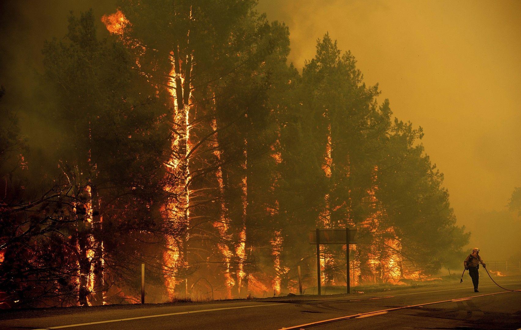 Променливият вятър и жегата в Калифорния подхранваха пламъците