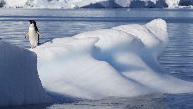 Ледник с размерите на България ще повиши драстично нивото на океаните
