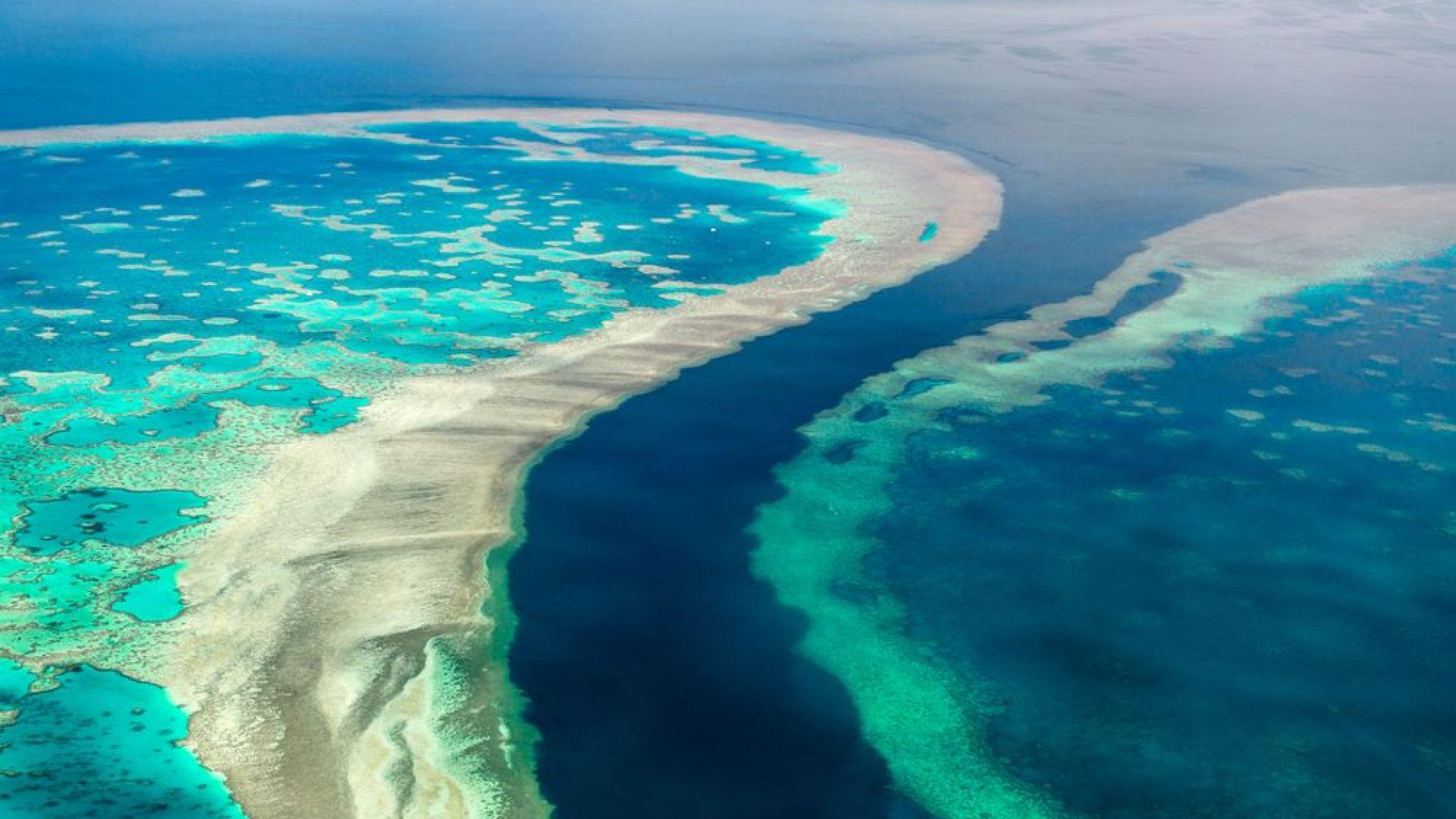 Изстрелват соли в небето, за да спасят Големия бариерен риф