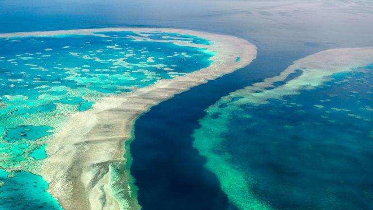 От 1995 г. до сега Големият бариерен риф в Австралия