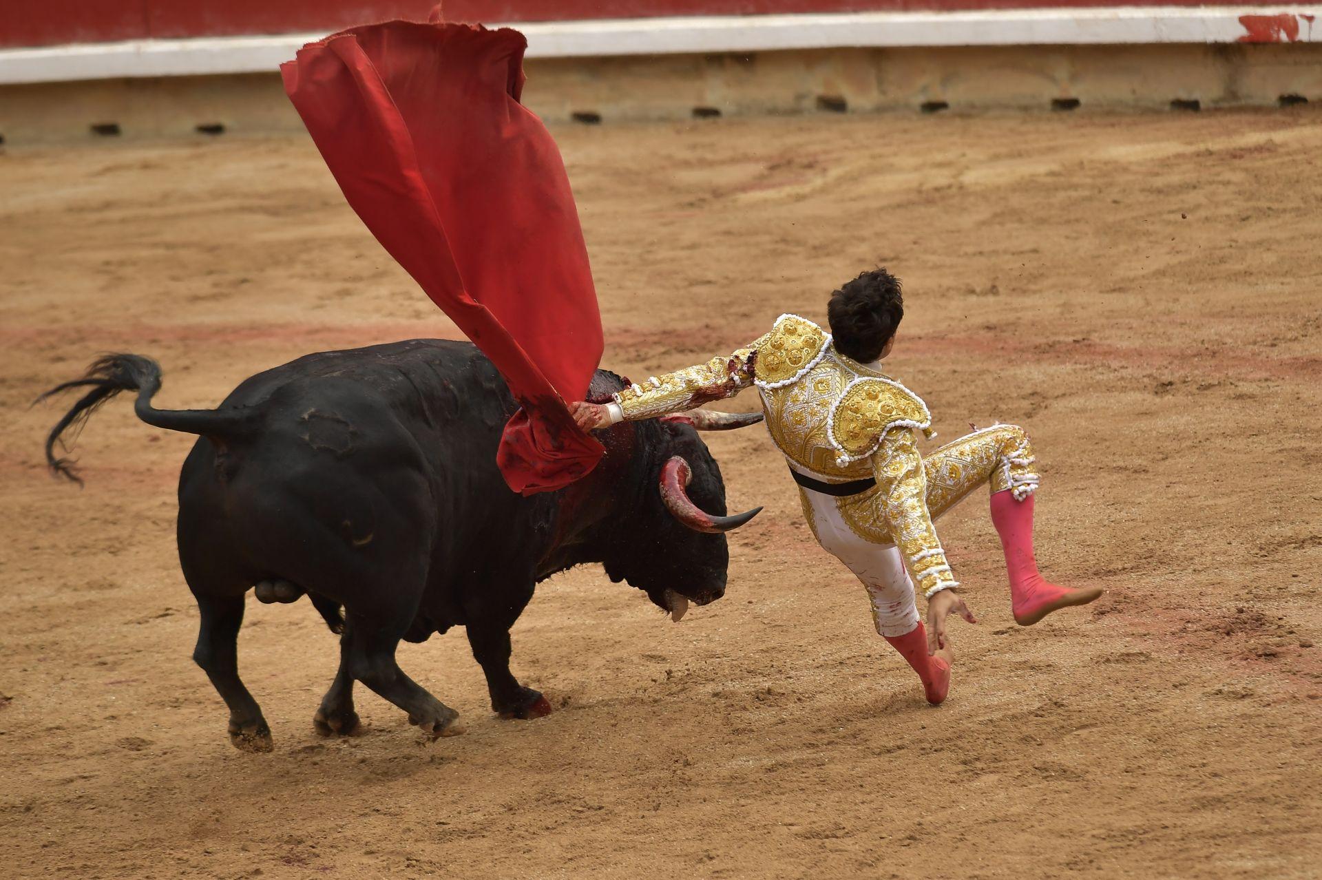 Първото пускане на биковете в Памплона