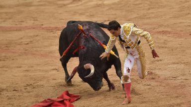 Петима пострадаха при пускане на биковете в Памплона