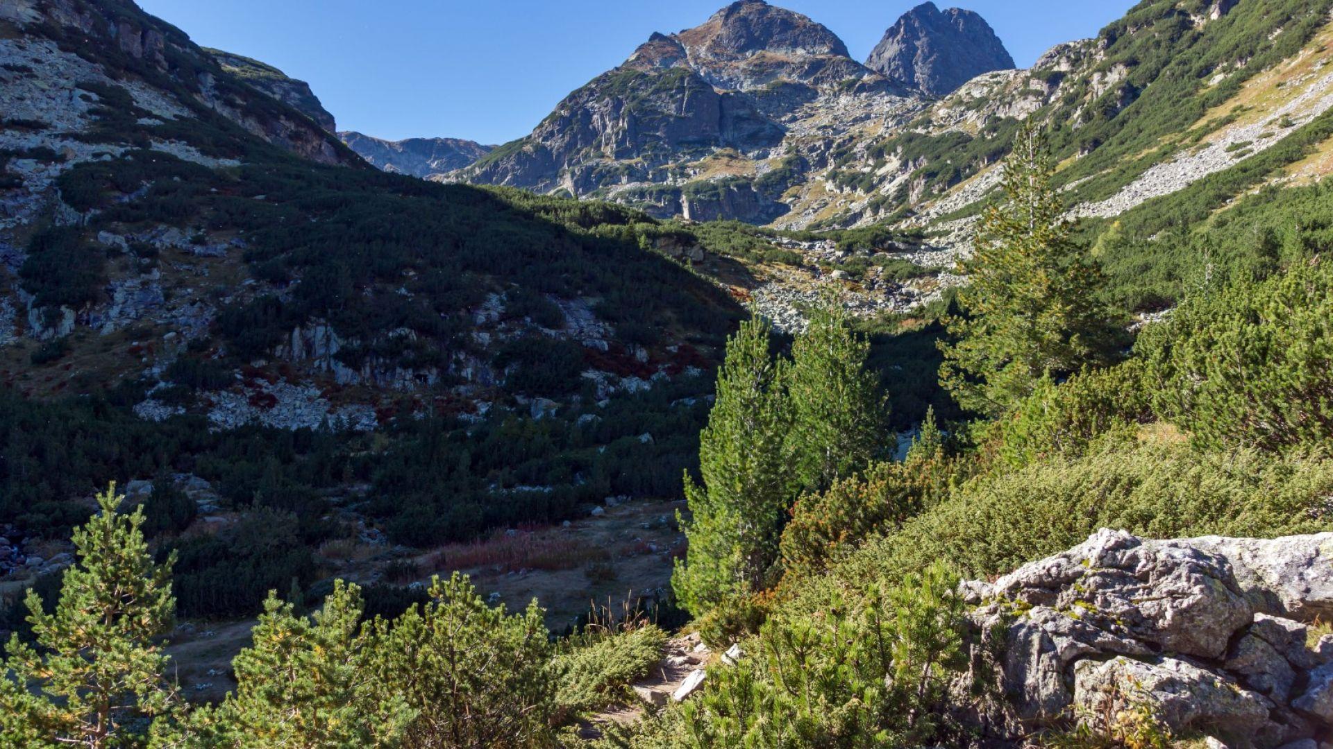Спасиха пострадал белгиец, изоставен от приятели на 2600 метра в Рила