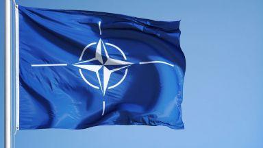 Кръстосан огън: Ще останат ли военни съюзници Европа и САЩ?