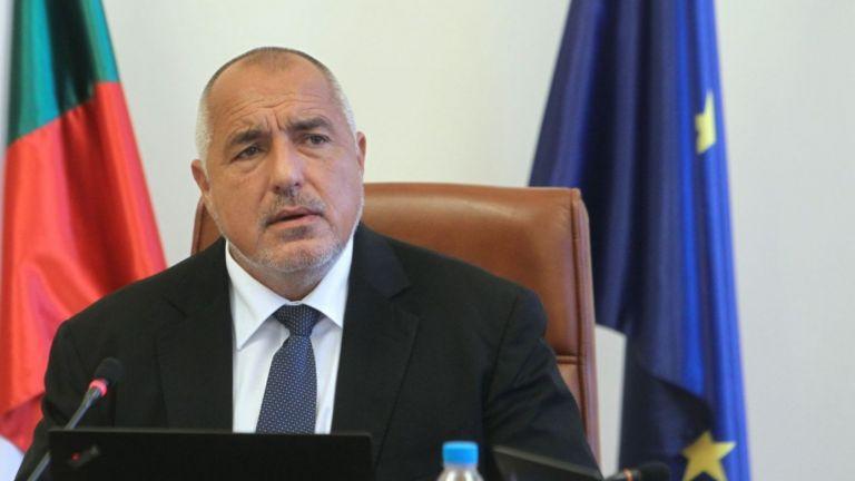 Борисов уволни зам.-министър и трима чиновници заради чумата по животните