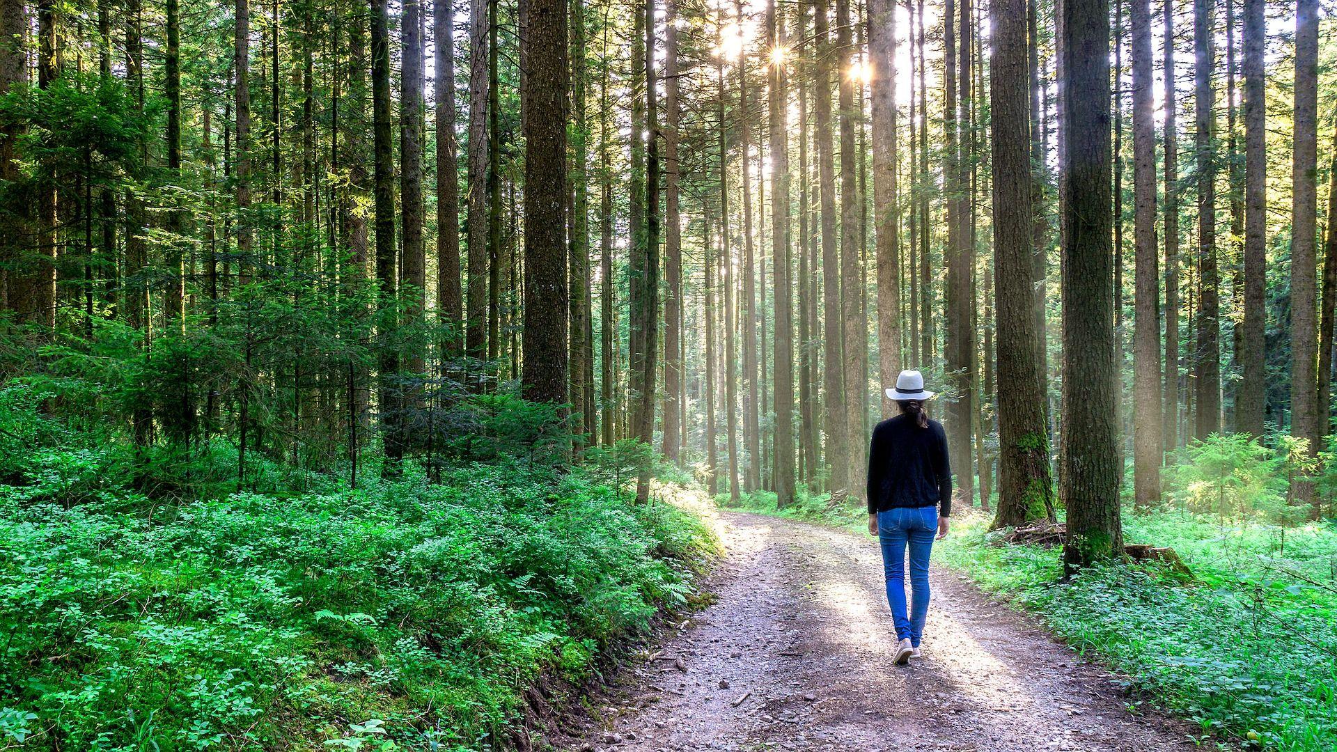Учени разкриха тайната на дълголетието