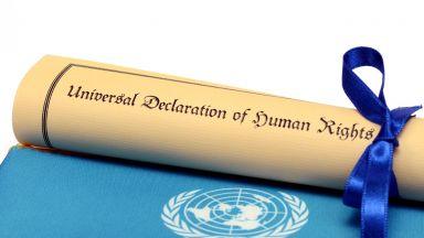Исландия зае мястото на САЩ в Съвета за човешки права на ООН