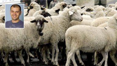 Експерти алармират: БАБХ може да докара чумата до Видин