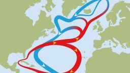 Какво ще стане с Европа, ако Гълфстрийм спре?