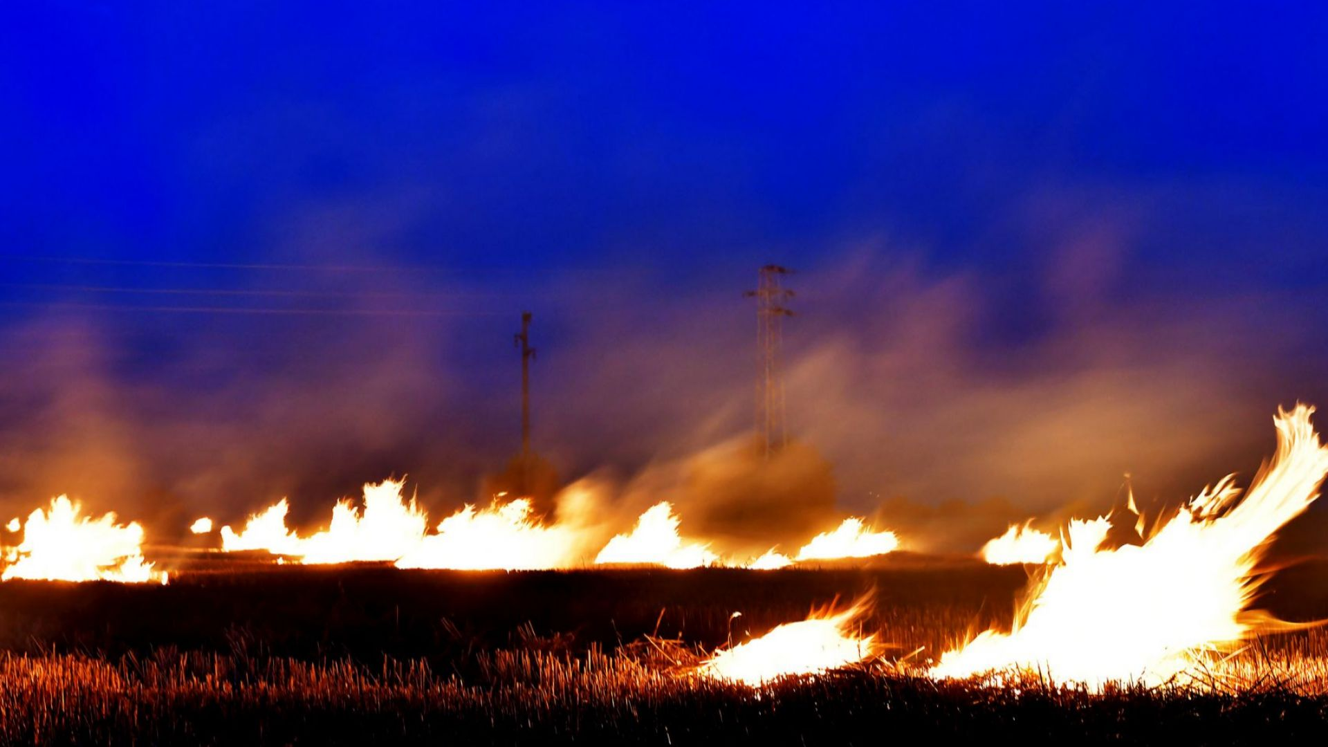 Няма пострадали българи при пожара на Ситония