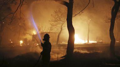 Задържаха 4-ма заподозрени, че са подпалили един от пожарите в Гърция