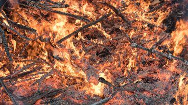 Опустошителни горски пожари в Швеция