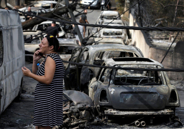 Десетки коли са изпепелени