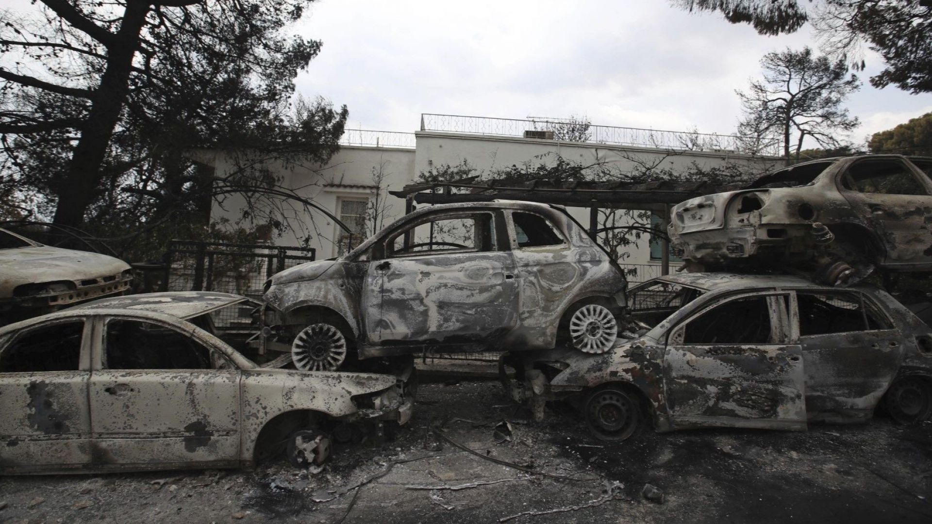 Оцелял от пожарите край Атина разказа за драматичното си спасение