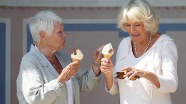 Камила и Джуди Денч ядоха сладолед на частния плаж на кралица Виктория (галерия)