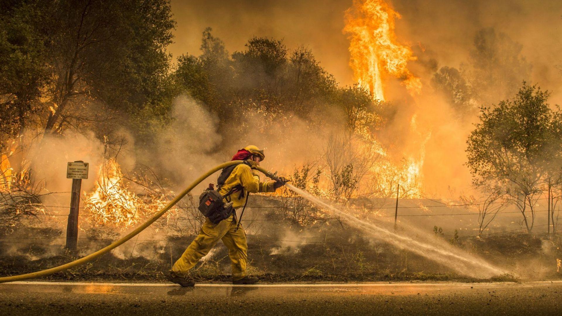 Шест жертви и 17 души в неизвестност от пожарите в Калифорния (видео)