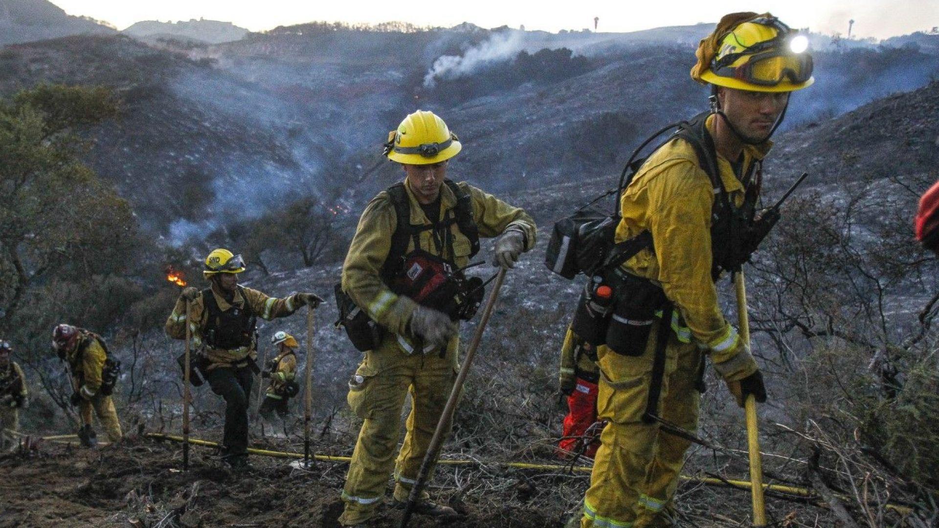 Дивите животни са застрашени от пожара край Рединг