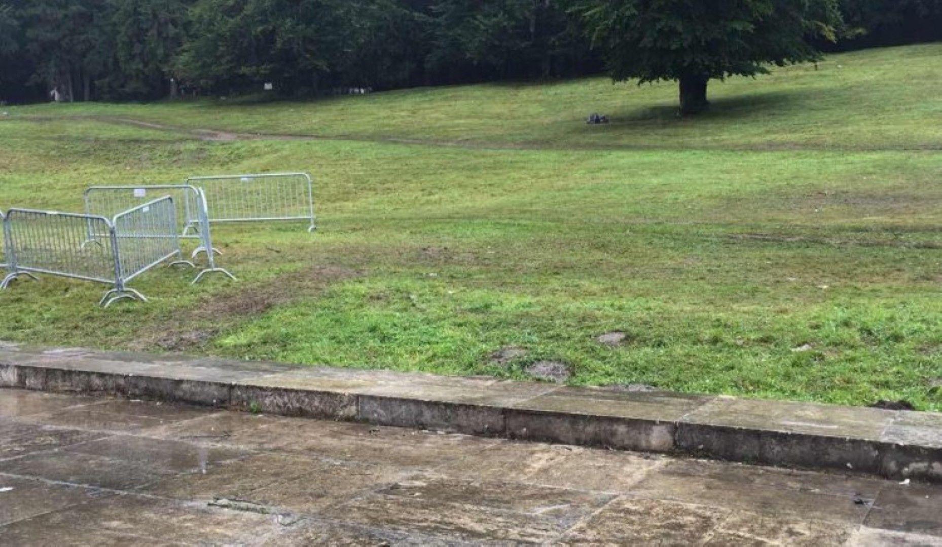 От партията публикуваха снимки, на които се вижда разчистената поляна