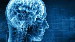 Шефът на Гугъл призова за регулация на изкуствения интелект