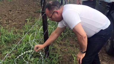 Намериха труп на диво прасе край Шабла, полиция отцепи района заради опасност от чума