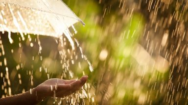 Защо дъждът ухае толкова приятно?