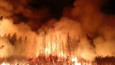 Пожарът в Калифорния е най-големият в историята на щата