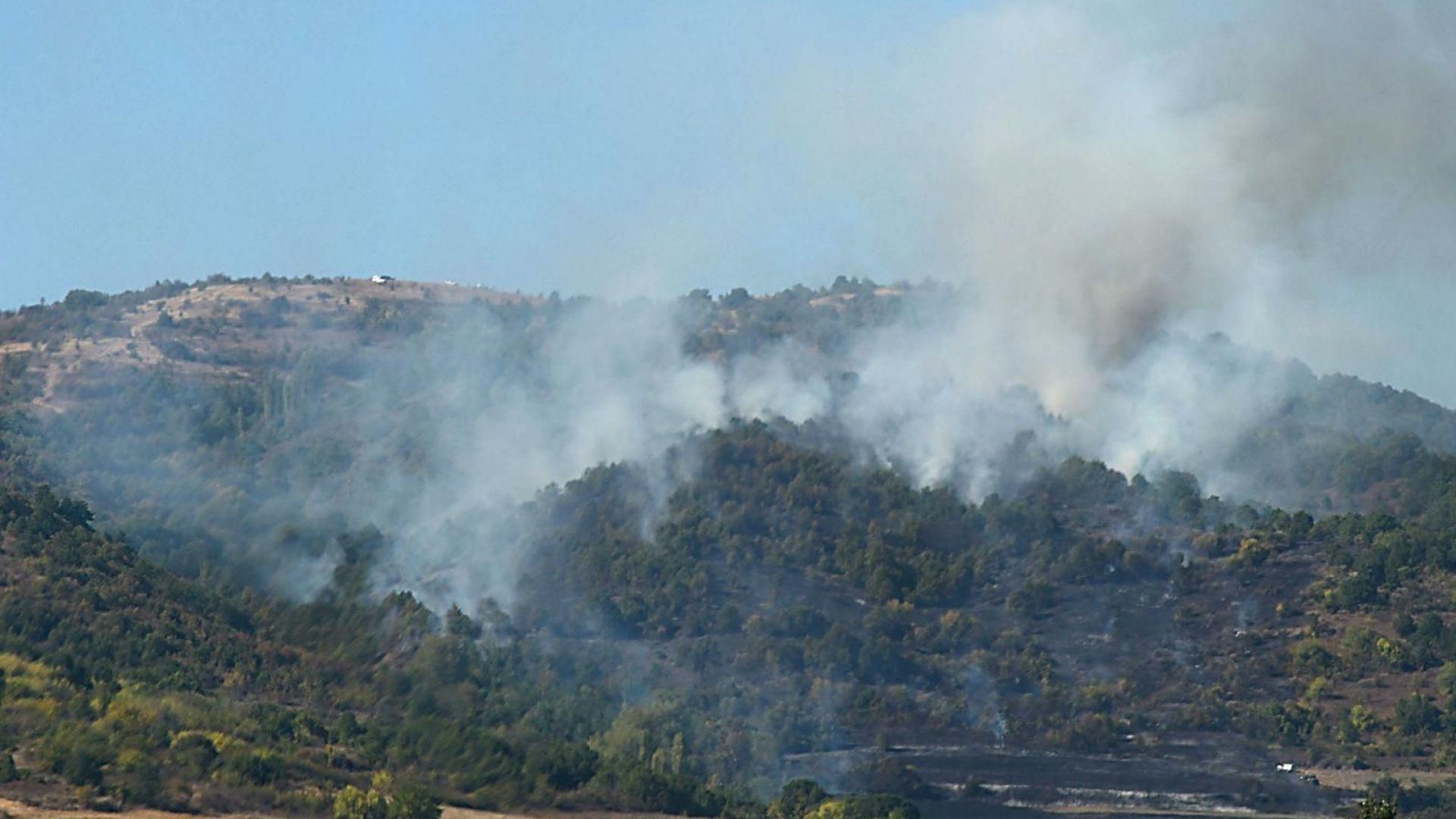 Жегите дойдоха и в България, опасността от горски пожари расте