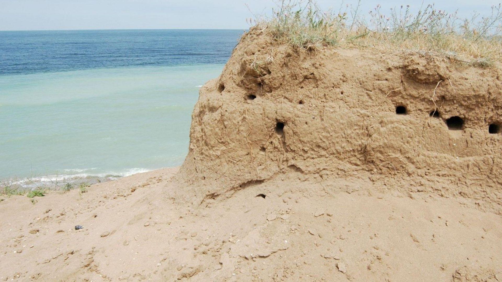 Морето край Дуранкулак изхвърли труповете на три деца