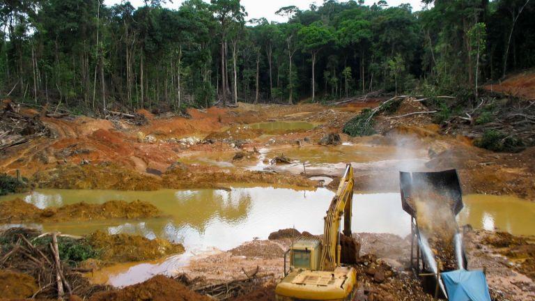 Продължава унищожаването и на колумбийските тропически гори