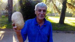 Земеделец от Овощник отгледа картоф-гигант