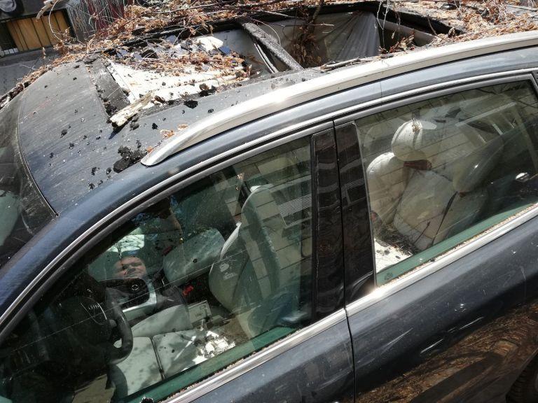 Дърво падна върху две коли в центъра на София (снимки)