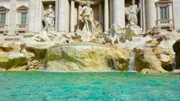 Масов бой пред фонтана ди Треви заради селфи (видео)