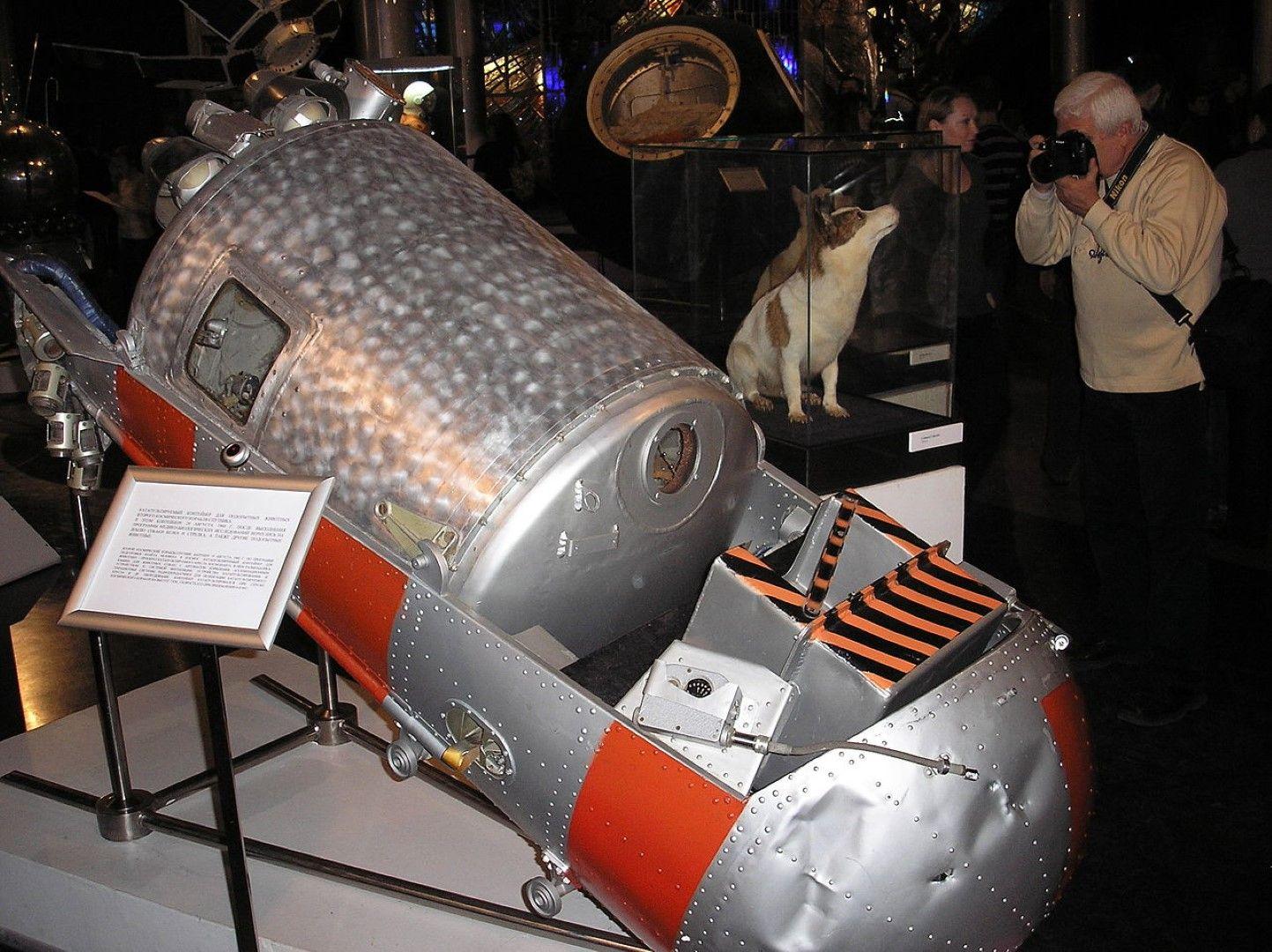 В този апарат летят Белка и Стрелка