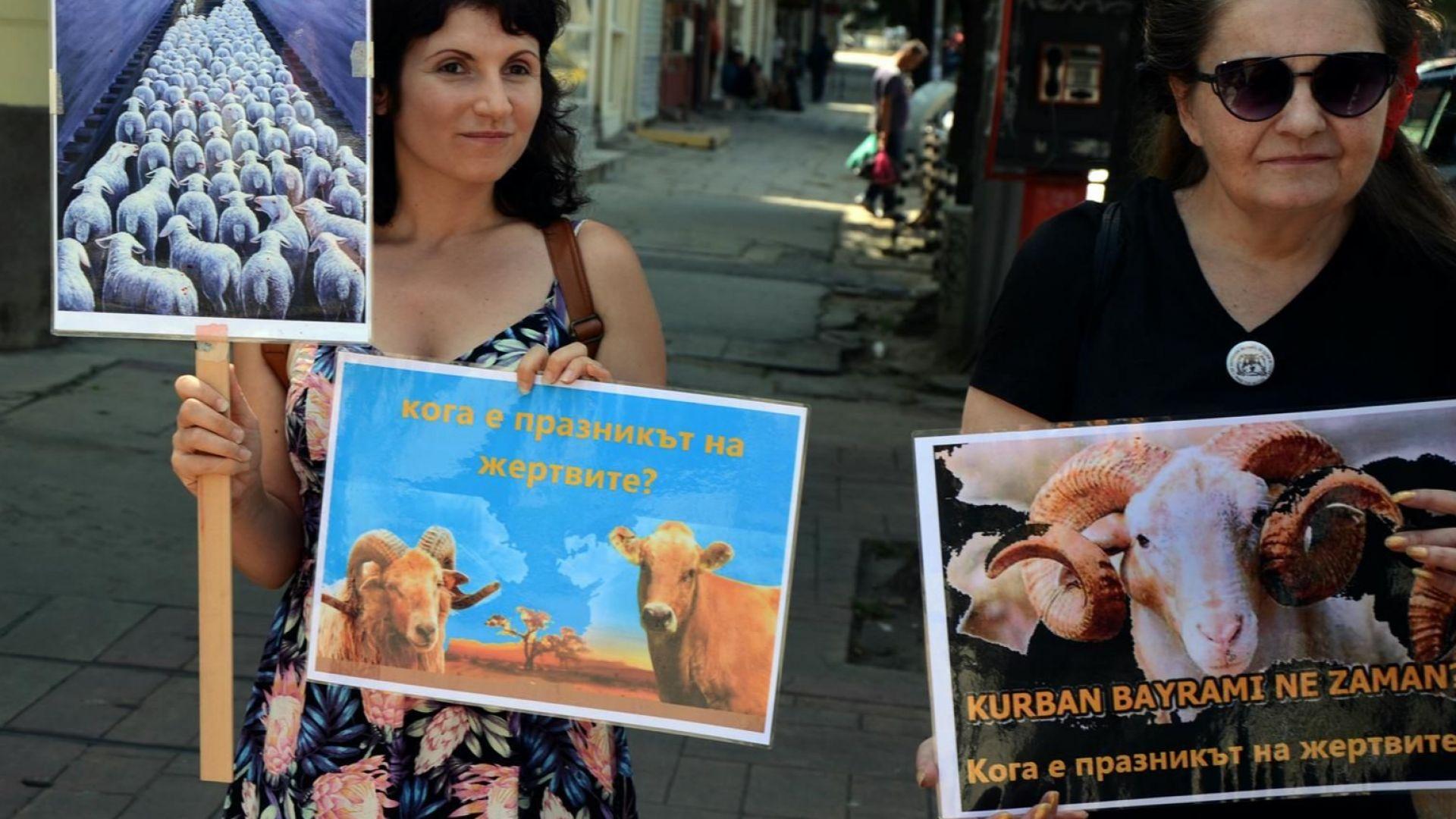 Вегани протестираха срещу коленето на животни за Курбан байрама